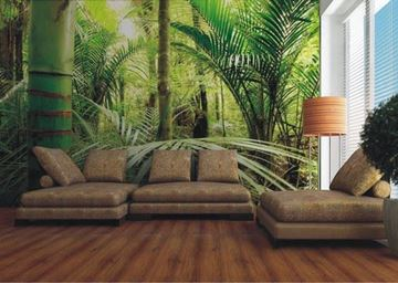 3d fotobehang bamboo jungle in woonkamer